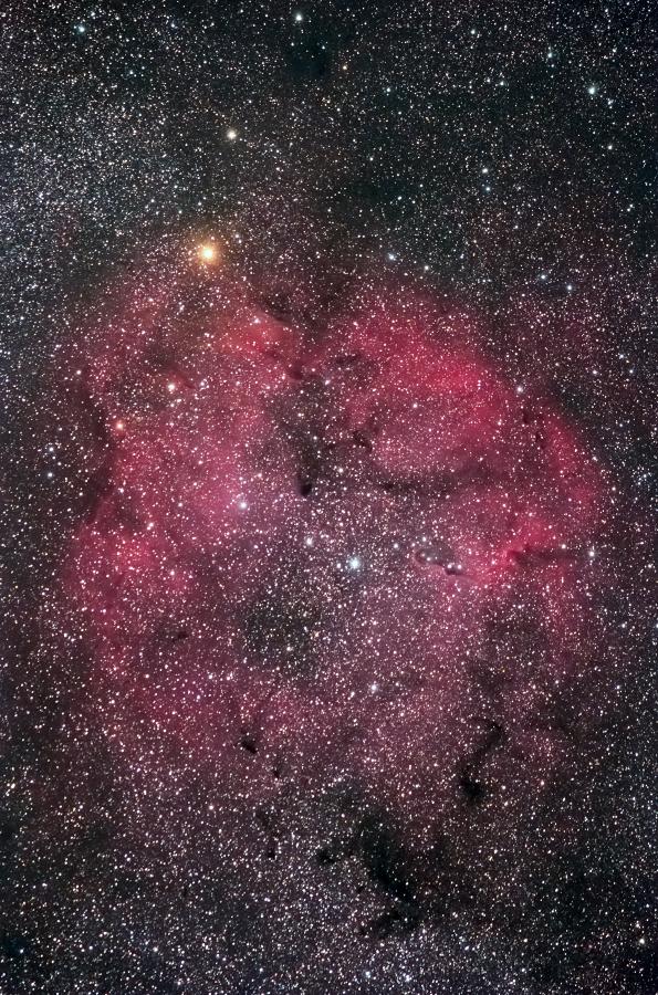 IC1394_140726_02.jpg
